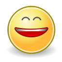 1449618583_face-smile-big